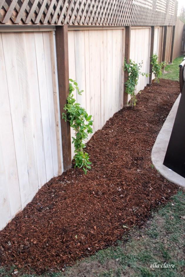 DIY | Customize Your Garden Mulch Color