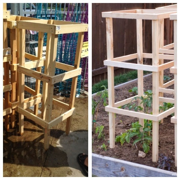 Diy tomato cage sturdy and inexpensive ella claire
